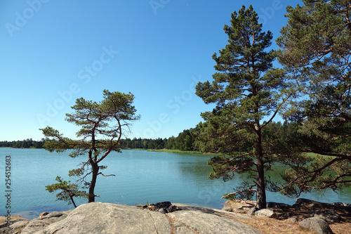 Leinwanddruck Bild Naturreservat Ragö bei Stockholm, Schweden