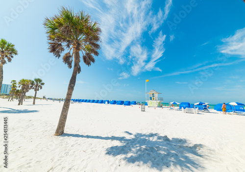 White sand and palm trees in Clearwater
