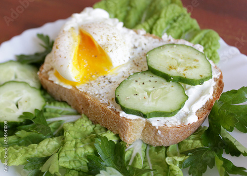 Bread with poached egg, cucumber, cream cheese, greens and lettuce on brown background © yagurana