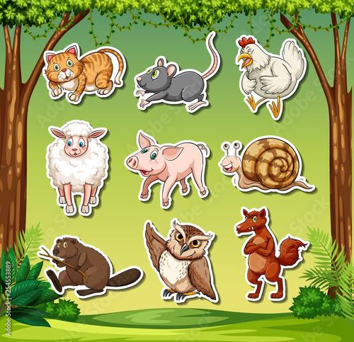 Set of animal sticker character