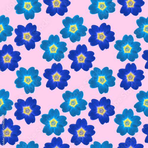 Verbena. Seamless pattern texture of flowers. Floral background, photo collage - 254566864