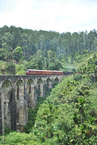 Nine arch bridge in Ella in Sri Lanka - 254631605