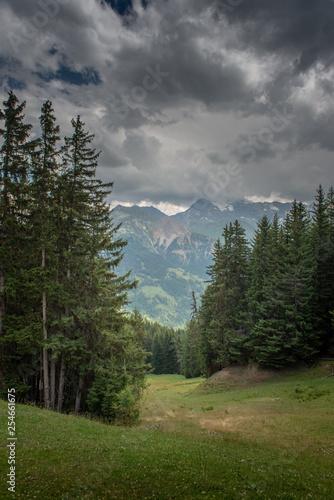 Alpine landscape - 254661675