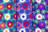 Set of three seamless patterns with cornflowers and chamomiles in one style. Colorful illustration, eps10.