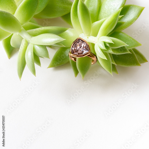 Ring on white textured background and succulent.
