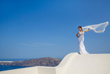 Beautiful bride stands on a high roof