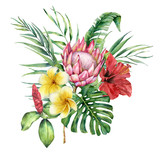 Watercolor tropical flowers and leaves bouquet. Hand painted protea, hibiscus and plumeria isolated on white background. Nature botanical illustration for design, print. Realistic delicate plant. - 254735231