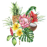 Watercolor tropical flowers and fruit bouquet. Hand painted protea, hibiscus, plumeria, leaves isolated on white background. Nature botanical illustration for design, print. Realistic delicate plant. - 254735273