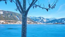 """Постер, картина, фотообои """"Walk along the Esplanade embankment of frozen Zeller see (lake) with a view on its bright blue surface, snowy Alps and trees of Elisabeth park, Zell am See, Austria."""""""
