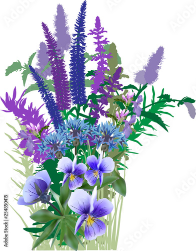 bunch of garden blue and violet flowers isolated on white