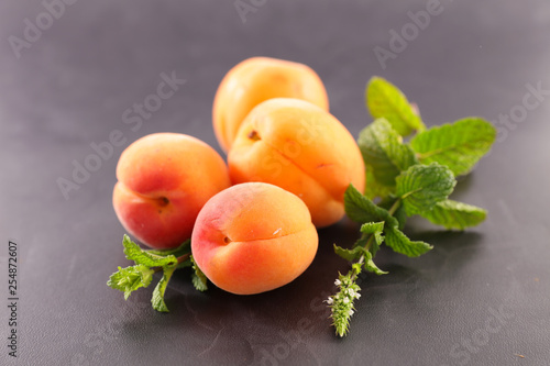 apricot and leaf ingredient - 254872607
