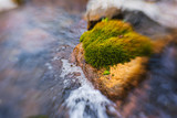 River in the mountains. Large boulders and cobblestones. Green moss on the rocks. Fast flow of the river. Rocks under water. Nature walk.