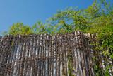 bamboo fence against blue sky
