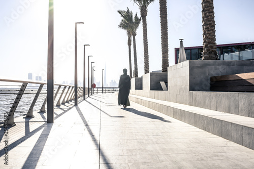 obraz lub plakat Dubai creek harbor