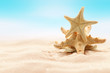 Leinwanddruck Bild - Sea starfish on beach in sand. Beach holiday, summertime background. Colour living coral.