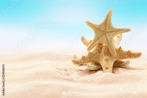 Leinwanddruck Bild Sea starfish on beach in sand. Beach holiday, summertime background. Colour living coral.