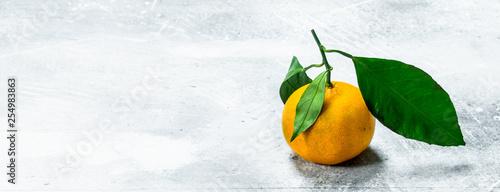 One fresh mandarine with leaves. - 254983863