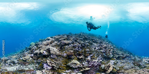 360 of divers in Palmyra