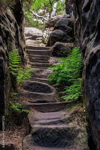 Stufen in Stein