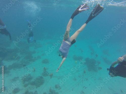 obraz PCV coral restoration