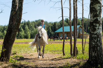Young girl and white horse on nature in summer