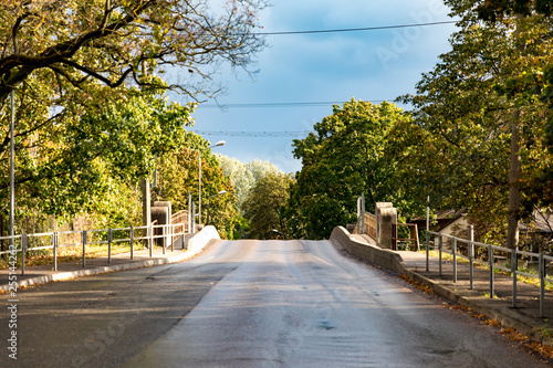 bridge in the park - 255144262