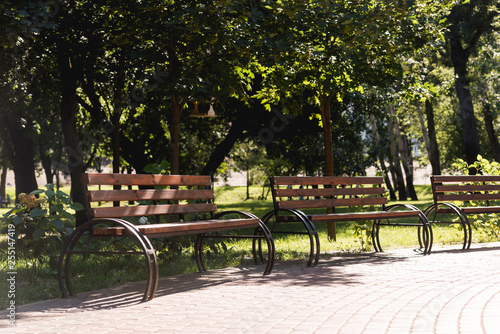 sunshine on wooden benches in green peaceful park