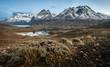 Leinwanddruck Bild - Lagos y montañas en Torres del Paine.