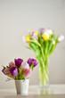 Tulip flowers in vase