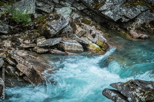 Foto Murales Crystal Clear Mountain River