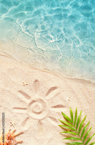 Leinwanddruck Bild Summer background with green palm leaf and shell. Beach texture. Copy space.