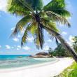 Tropische Insel mit Palmenstrand am Meer