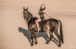 Arabian horse, a girl, and the desert