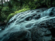 Waterfall in forest - 255275656
