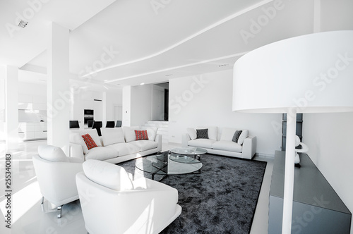 Luxurious and modern living room, dining room and kitchen. Luxurious furniture, sofa, table and chairs.