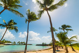 Palm trees and clear water in bas du Fort beach in Guadeloupe