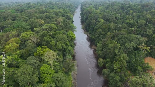 Aerial view. River in the jungle of Equatorial Africa