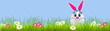 Easter eggs with bunny easter - 255373602