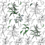 Vector sketch eucalyptus leaves big seamless pattern. Hand painted eucalyptus leaves and branch isolated on white background for design, print or fabric. - 255383653