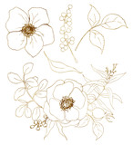 Vector golden sketch anemone bouquet set. Hand painted flowers, eucalyptus leaves, berries and branch isolated on white background for design, print or fabric. - 255383658