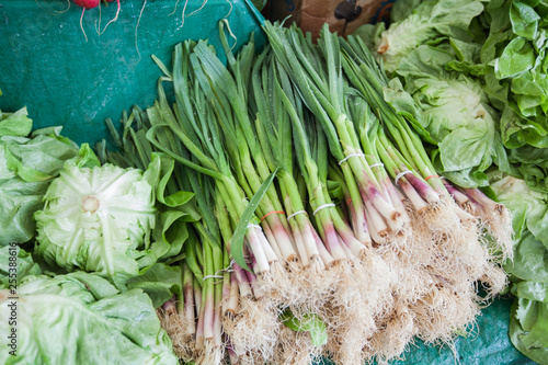 green onion at local farmers market