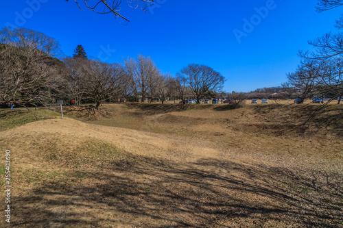 冬の佐倉城跡の空堀の風景 © nameyasu