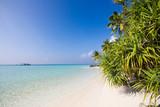 Paradiesischer tropischer Strand auf den Malediven