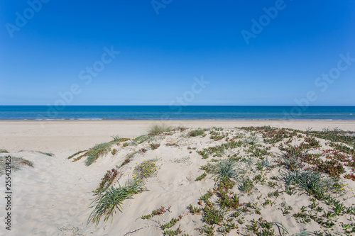 Sandy dunes in the mediterranean, Denia, Valencia, Spain