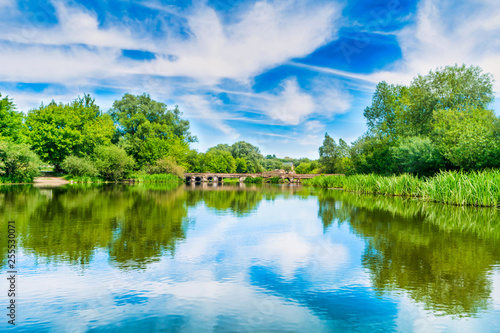 Foto Murales Calm landscape with blue river and green trees