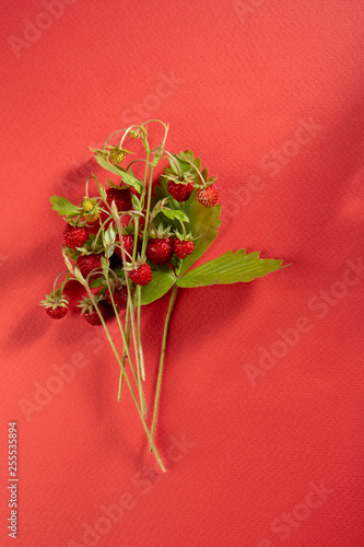 Fresh summer berry on red background, food top view