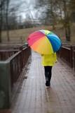 colorful umbrella on a rainy day