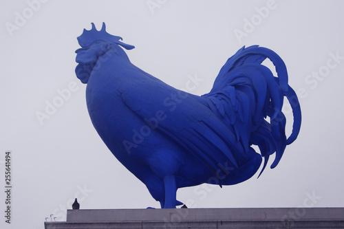 obraz lub plakat Big blue cock (Galo azul de Londres)