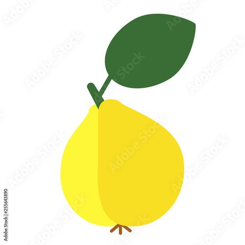 wild pear flat color art illustration