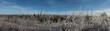 Frosty landscape - 255744239